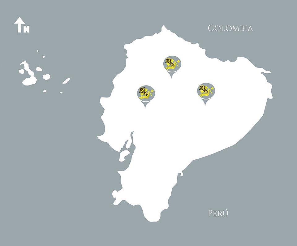 Neoselva-Mapa-Three-World-Herping-Ecuador-Photo-Tours-Web2